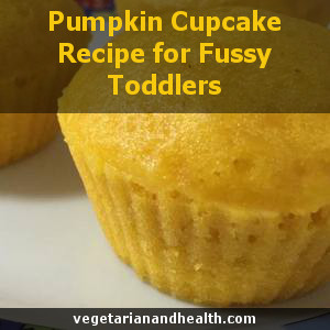 Pumpkin Cupcakes Recipe for Fussy Toddlers